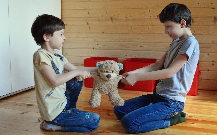 25 redenen waarom mijn kinderen ruzie met elkaar maken