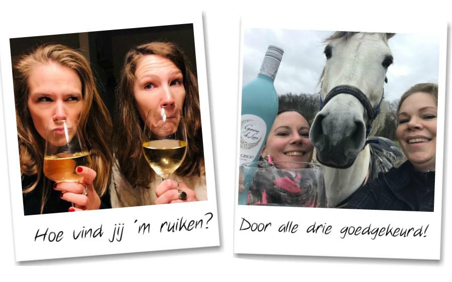 wijn testen